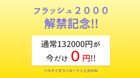 フラッシュ2000-1